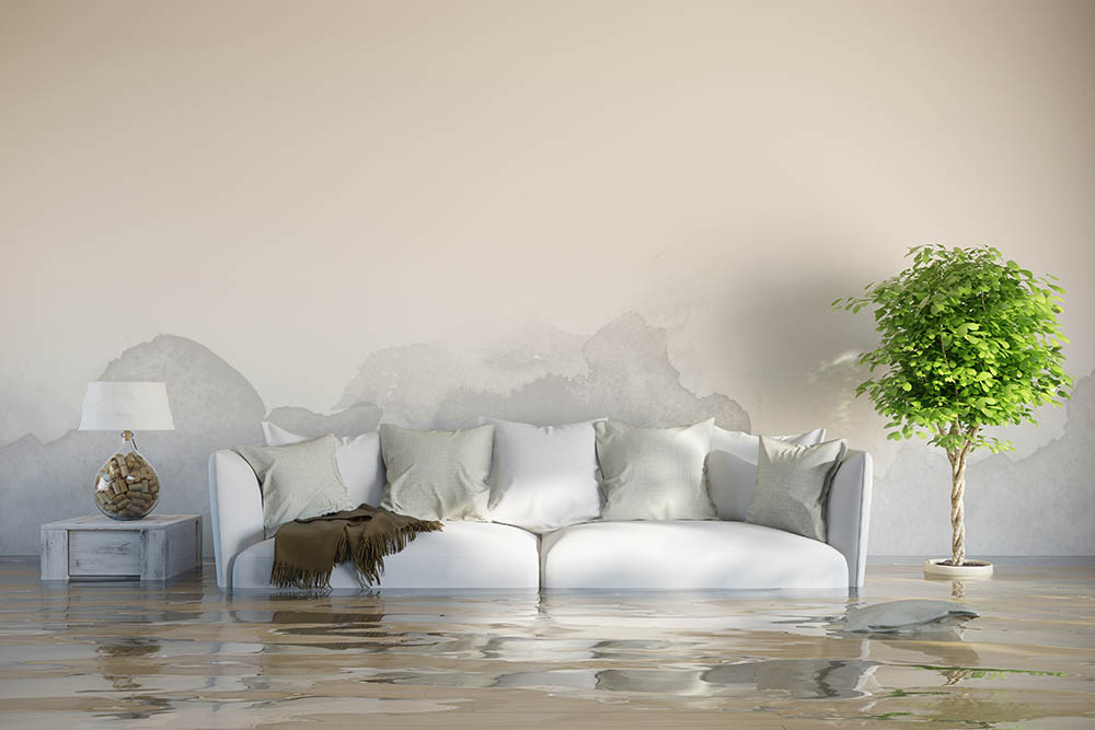 A flooded living room space with white couch and brown blanket, white side table and lamp, and green tree.