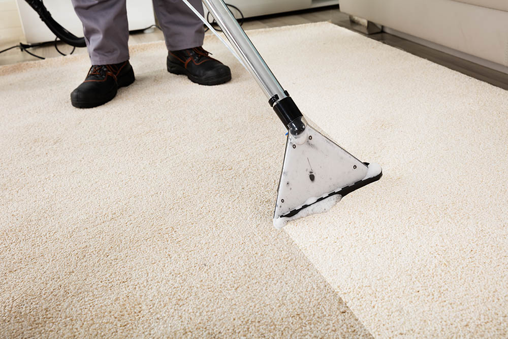 An employee cleaning beige carpet.
